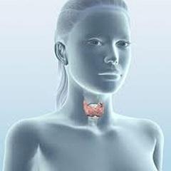 Фото - Підвищена стомлюваність, нервозність, млявість - симптоми дефіциту йоду